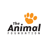 Website design and development Montreal - animal_foundation by Grafika Designs